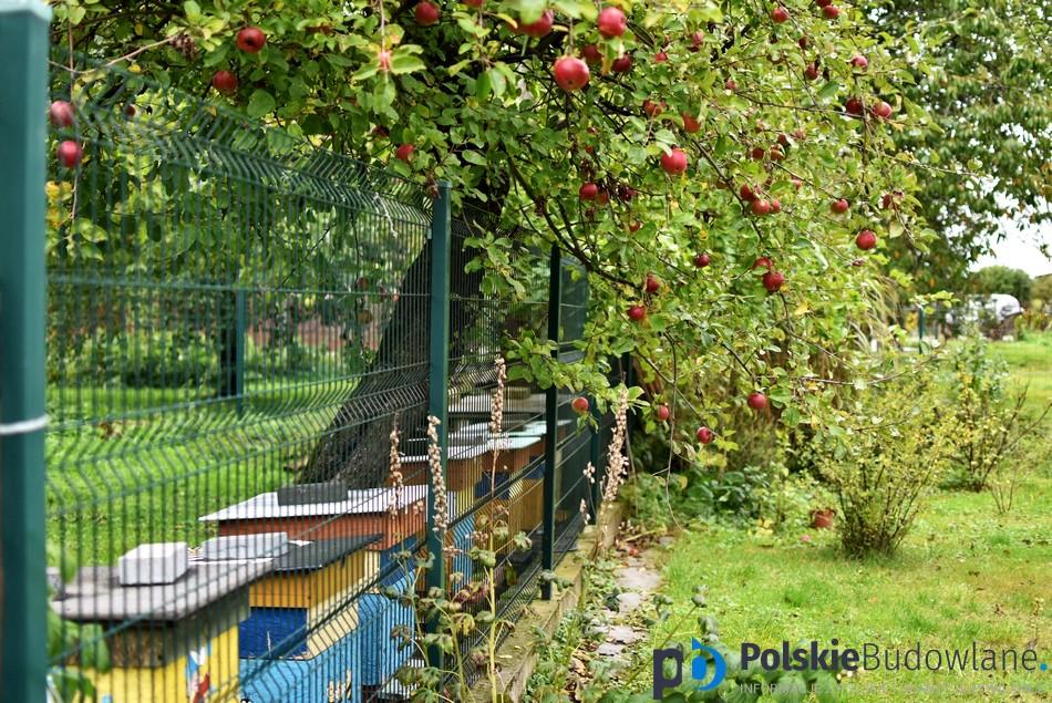 ogród jak z bajki
